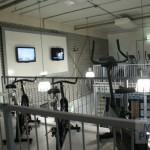 Gym Inn